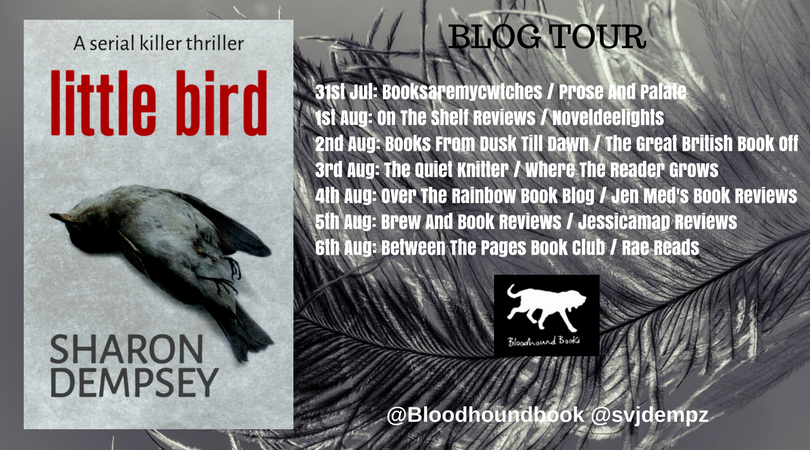Blog Tour & Review – Little Bird by Sharon Dempsey – Jessicamap Reviews