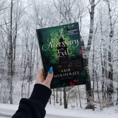 Book Mail A Necessary Evil By Abir Mukherjee Jessicamap Reviews
